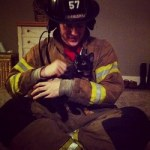 A cat rescued by firefighters
