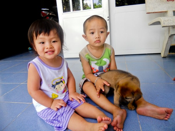 Les enfants adorent les chiots