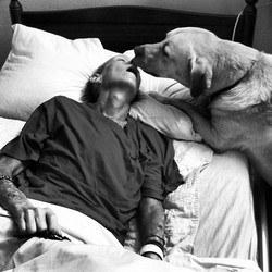 Jethro un chien dit adieu à sa maitresse