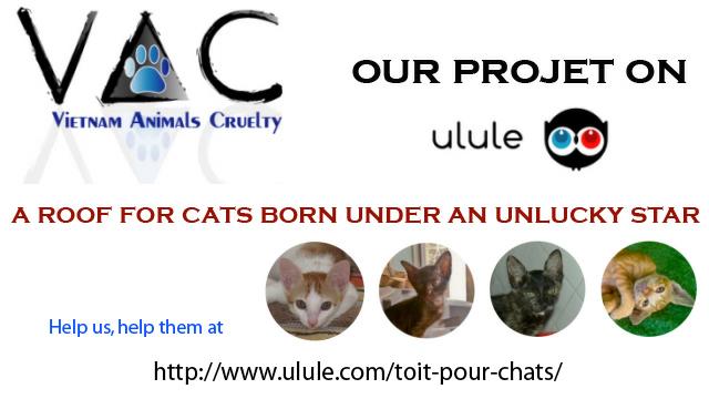 Ulule project