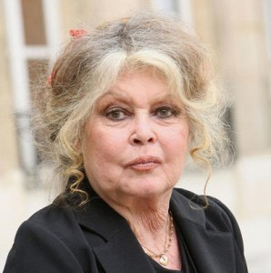 Brigitte Bardot asks the dog meat trade stop