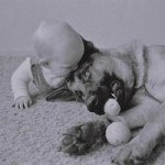 A female dog protects an abandoned newborn human