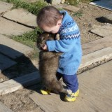 The boy and the puppy